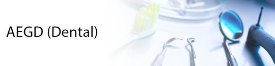 Advanced Education In General Dentistry (Aged) Residency Program